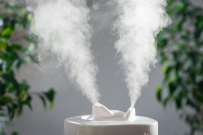 best humidifier and dehumidifier combos